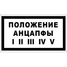 Положение анцапфы I II III IV V
