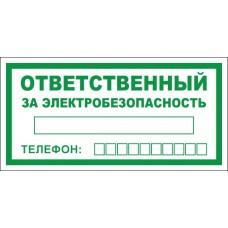 Ответственный за электробезопасность