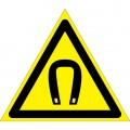 W13. Внимание. Магнитное поле
